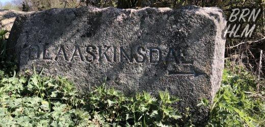 Blåskinsdalen