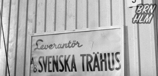 Svenskehusene