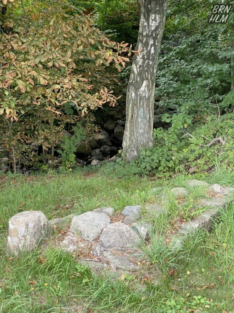 Læsåen løber lige forbi ruinerne efter kapellet ved Sankt Jørgensgården Spidlegaard