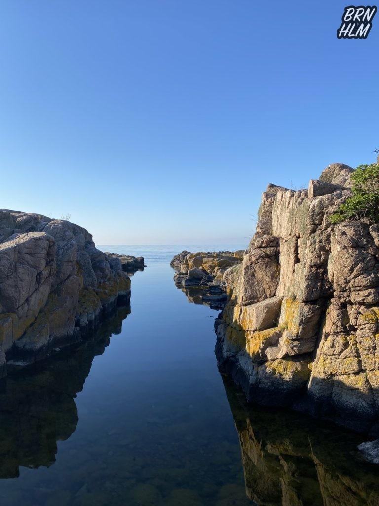 Sprækkedal i den Bornholmske klippekyst - 2020